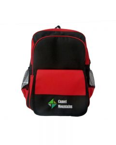 RB1137 ( School Back Packs )